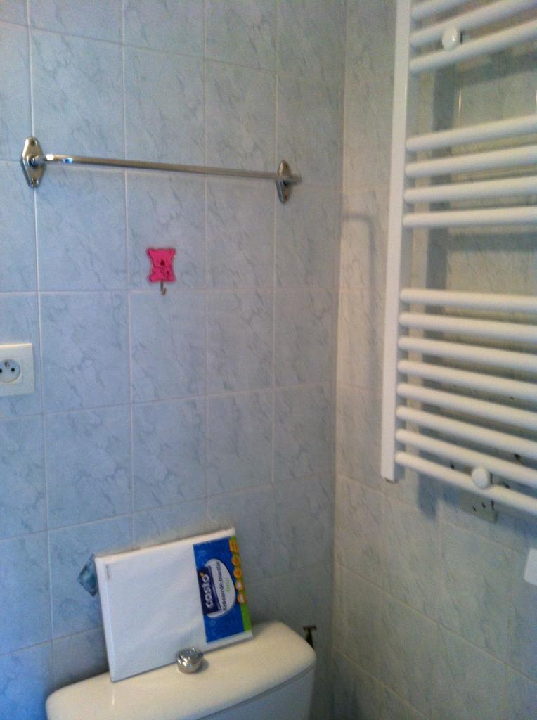 Radiateur sèche serviette électrique